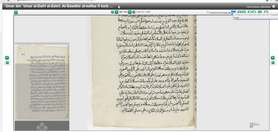 One of the many manuscripts available online on the Bnf site.
